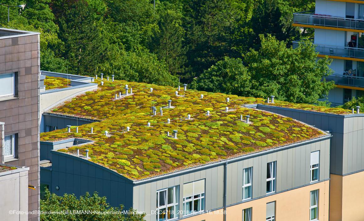 Solarplicht auf den Dächern
